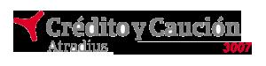 Crédito y Caución en Alicante (cyc) de crédito y caución en Elda, con más de 35 años de experiencia. Cyc en Alicante. Agencia exclusiva 3007. Crédito y Caución Valencia, Castellón y Alicante.