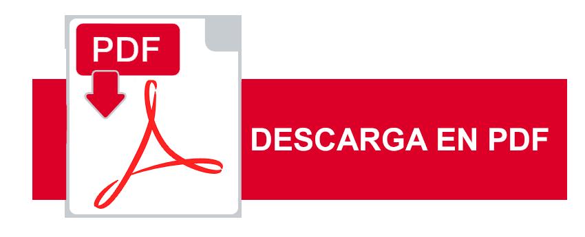 descarga-informe-pdf